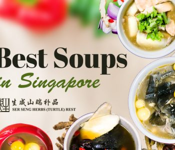 best soups in singapore